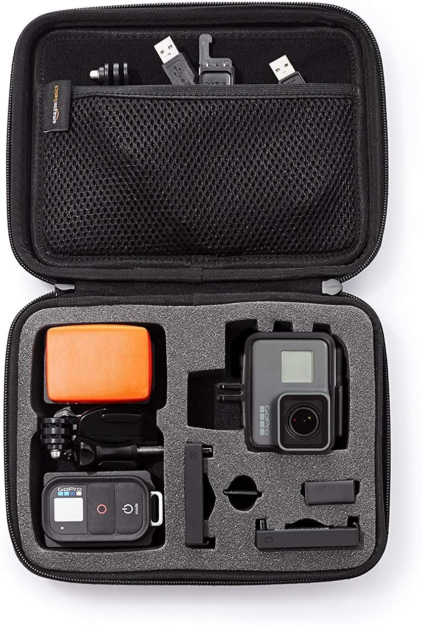 Amazon Basics Carrying Case for you GoPro and Accessories