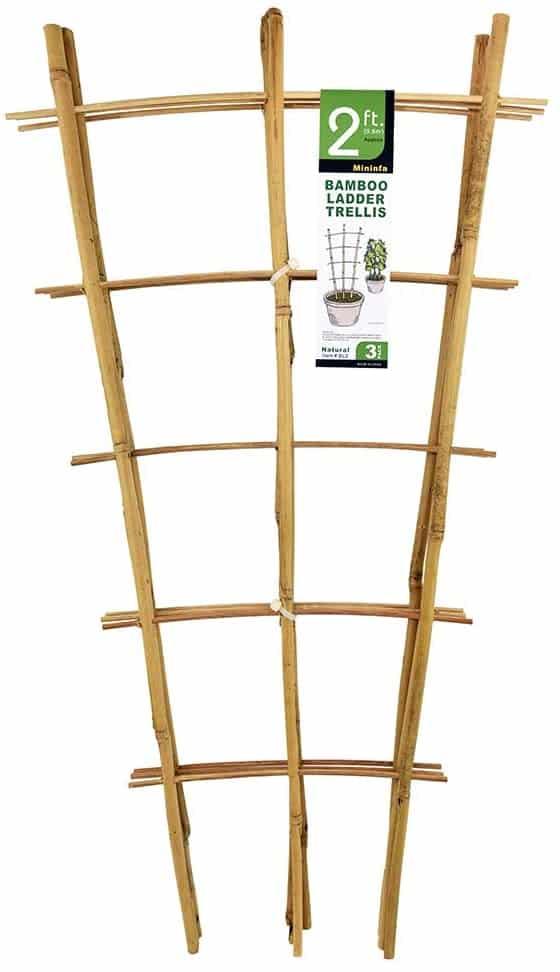 Mininfa Natural Bamboo Trellis 24 Inches Tall