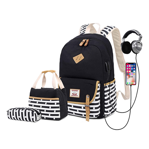 Delapuy Canvas Waterproof backpack for College